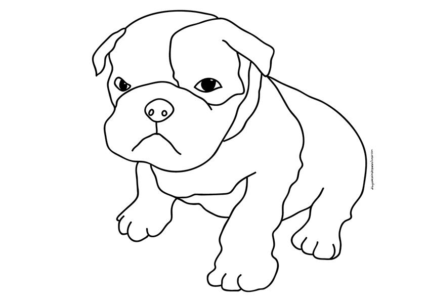 Perro cachorro de boxer | Dibujos para colorear