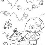 Dora 8
