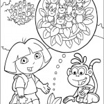 Dora 9