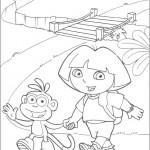 Dora 17