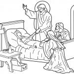 Jesús 13